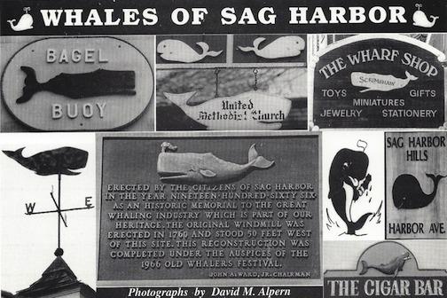 whales bulova