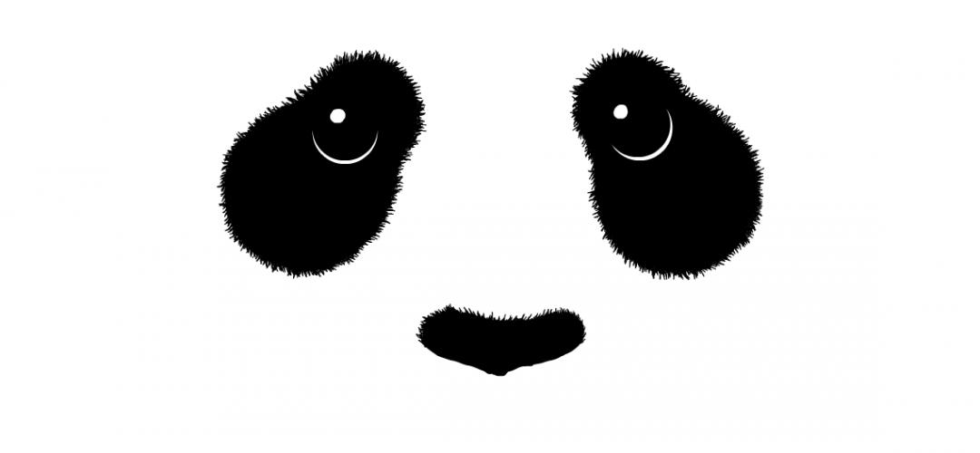 panda watch dial